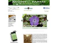 acornfarms.com acorn, wholesale, wholesale trees
