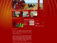 África Tours