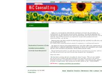 AIC Consulting: Professional Business Services