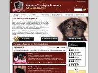 Puppy Finder, Guarantee, Why Us?, Code of Ethics