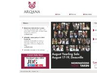 Arqana :: Thoroughbred