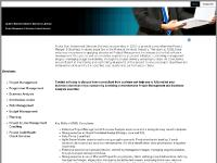 Project Management & Business Analysis Services