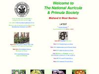East Midland Group, NEWS-BOARD, Seedlist, Knowle Auricula Show