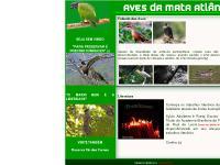 Sylvio Adalberto - Aves da Mata Atlântica