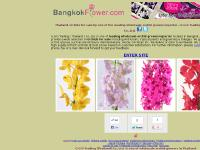 Thailand Orchid Growers, Thailand Orchid Nursery, Thailand Orchid Exporter, Alanda