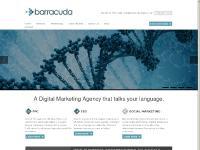 barracuda-digital.co.uk Services, Display, Local