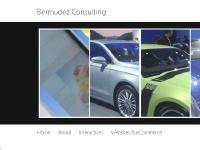 Bermudez Consulting | Digital Project Management