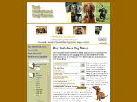Best Dachshund Dog Names