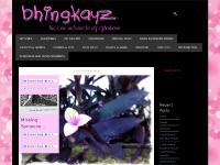 bhingkayz.com bhingkayz, ghizmos, computer