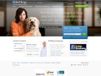 bizfilings.com LLC, incorporate online, incorporation
