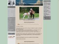 bjorklundkennel.com Siste nytt, Om meg og hundene, Pointere