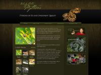 blackhillspythons.com Green Tree Python, Albino Blood Python, Albino Boa Constrictor