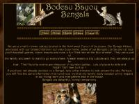Exotic Bengal kittens for sale in Louisiana