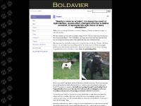 boldavier.co.uk