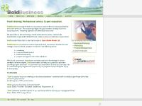 Bold Business : Fresh thinking. Professional advice. Expert execution.