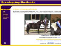broadspringshetlands.co.uk Stallions, General Stock, Youngstock