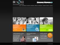 BR VOICE - Telecomunicações Multimídia