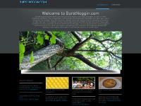 burstnoggin.com