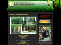 Bamboo Plants for Sale Illinois Rhizomes Indiana Bamboo for Sale