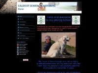 CALDICOT SCHOOL OF MOTORING - Home