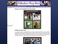 Callambene Pony Stud