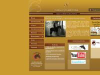 Campolina - Quem conhece, reconhece