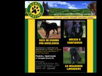 canilkasting.com.br canil, ninhada, bullmastiff