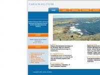statistik för carlsons - Carlson Solutions