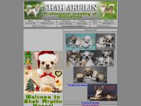 Chihuahua-show, Shows calendar, Abbreviations, Best in show wins