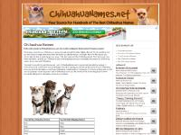 All The Best Chihuahua Names - ChihuahuaNames.net