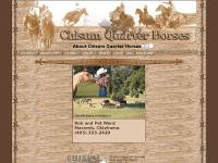 About Chisum Quarter Horses of Macomb Oklahoma