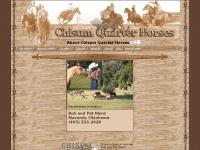About Chisum Quarter Horses of Macomb Oklahoma