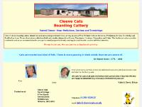 Guest Pictures, Picture Gallery