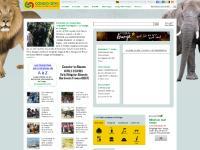 congo-siteportail.com - congo-siteportail
