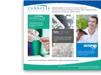 Consolis Systems Ltd
