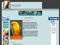 Conure Parrots Club
