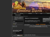 Corroboree Exports | Australian Aboriginal Art Gallery online