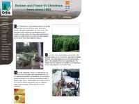 Christmas Trees 15-60', Christmas wreaths, Plain wreaths, Decorated wreaths