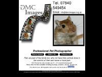 DMC Images