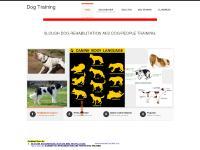 dog-trader.co.uk Dog Training, Dog Aggression, Dog training