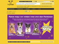 Dogs Trust - Christmas Appeal