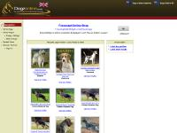 dogzonline.co.uk dog, dogs, show dogs