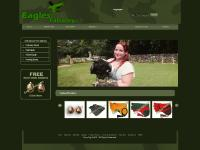eaglesfalconry.com