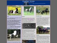 Japanese Spitz Dogs, TC Saddles, TIETSE 428, ADEL 357