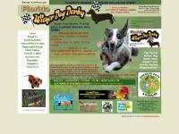 floridawienerdogderby.com Venue & Race Format, Registration Forms, T-Shirts 'n Stuff