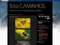 fotocaminhos.blogspot.com Nikon 105mm AF Micro, 23:19, 0 comentários