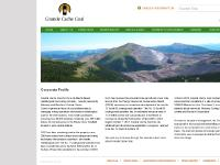 gccoal.com Management, Policies, Met Coal 101