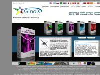 gindis.com free online game, online games free, online browser game