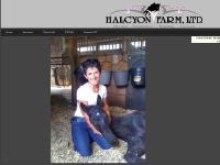 Halcyon Farm LTD