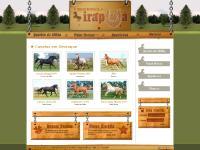 Haras Estância Irapuã - Os melhores cavalos estão aqui!